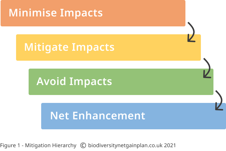 Biodiversity Net Gain Mitigation Hierarchy